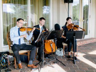 Elegance String Quartet 6