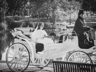 Willow Wind Carriage & Limousine Service 2