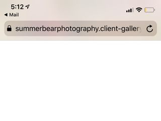 Summer Bear Photography 3