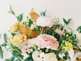 LeChat Roses 1