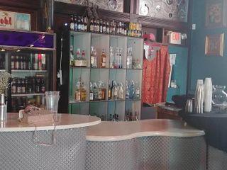 Leapin Lizard Lounge 3