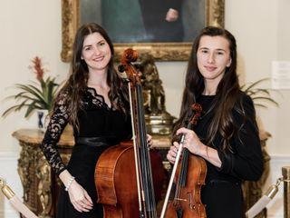 Violin Vita 2