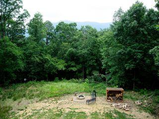 Shenandoah Woods 3