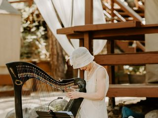 Celtic Harp Music by Anne Roos 2