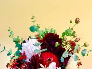Carolina Flowers 1