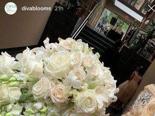 Diva Blooms 2