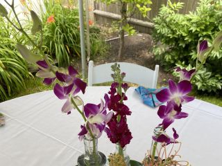 Madison Floral 5