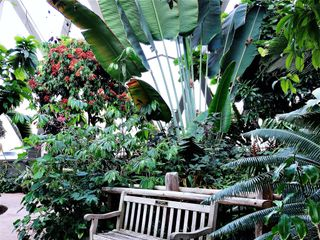 Denver Botanic Gardens and Chatfield Farms 3