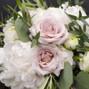 Mayfield Flowers 24