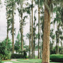 Cypress Grove Estate House 16