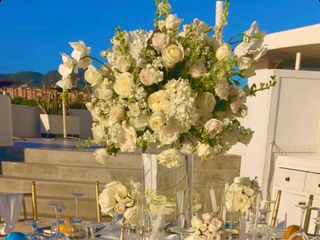 Cabo Weddings & Events 5