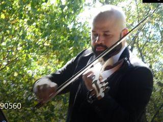 James Teal Violin 3