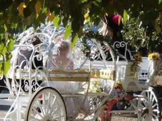 Cindy Cinderella Carriages 2
