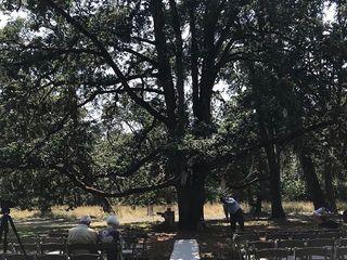 Mount Pisgah Arboretum 4
