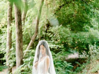 Amanda Lane Photography 2