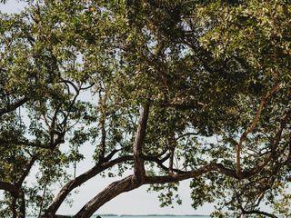 Baker's Cay Resort Key Largo 3