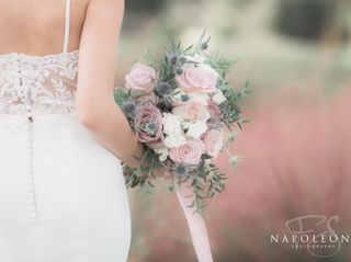 Napoleoni Photography, LLC 3