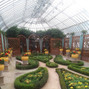 Phipps Conservatory 12