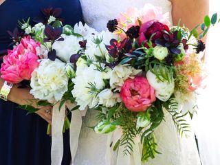 Sarah's Weddings 1