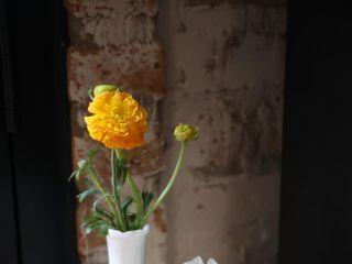 Honey Flower Studio 3