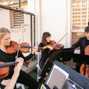 Organic String Quartet 4