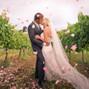 Bel Vino Winery 9