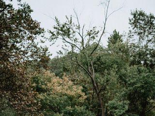 Donna Forsythe - Lehigh Valley Celebrants 4