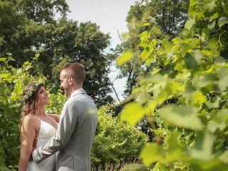 Monterre Vineyards 2