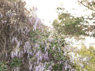Magnolia Plantation and Gardens 2