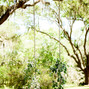 Wingate Plantation 14