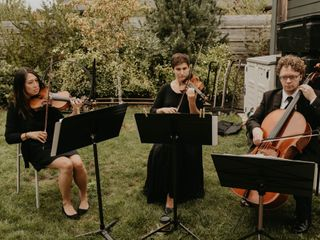 Puget Sound Strings 1