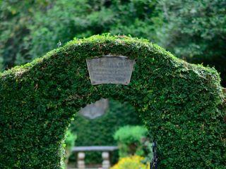 Alfred B. Maclay Gardens 2