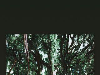 GAUCHO VISUAL™ 5