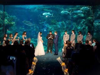 The Florida Aquarium 5