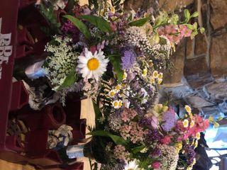 Free Range Flowers at Martin Farm 5