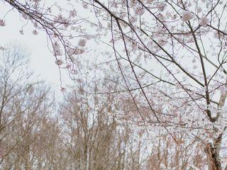 Justin Kunimoto Photography 3