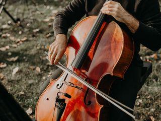 Lakeside Strings 2
