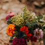 Frampton's Flowers 12