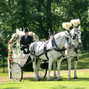 Belmont Manor & Historic Park 9