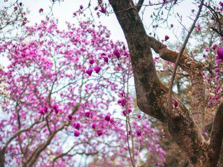 Sana Ullah Photography 4