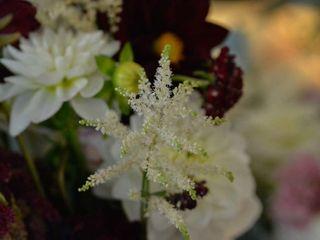 Bay Blooms Weddings 3