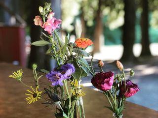 Blüm; Design in Flowers 4
