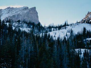 Vanilla Pine Photography 4