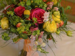 Nutmeg Flowers 7