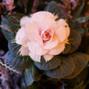 Floral V Designs 13