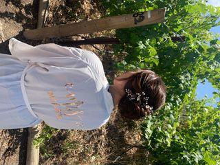 Casi Cielo Vineyards 3