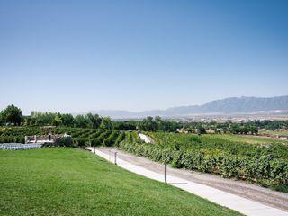 The Vineyards at Mt. Naomi Farms 5