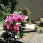 Cheryl Ann Floral Design 16