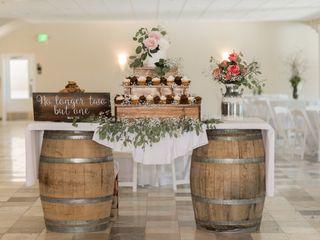 Belle Vie Vineyard 4