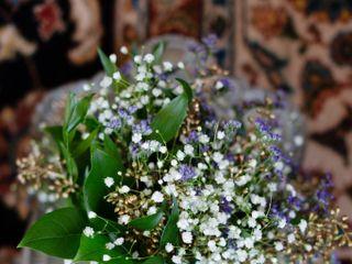 Belak Flowers 6